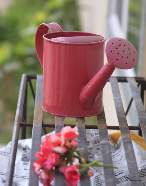 Watering Can sm